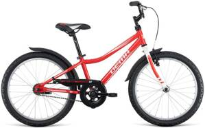 bicykel DEMA VEGA 20 RED 2019